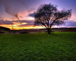 sunset-on-knees